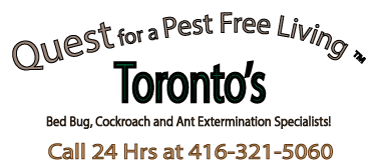 Quest for a Pest Free Living 416-321-5060