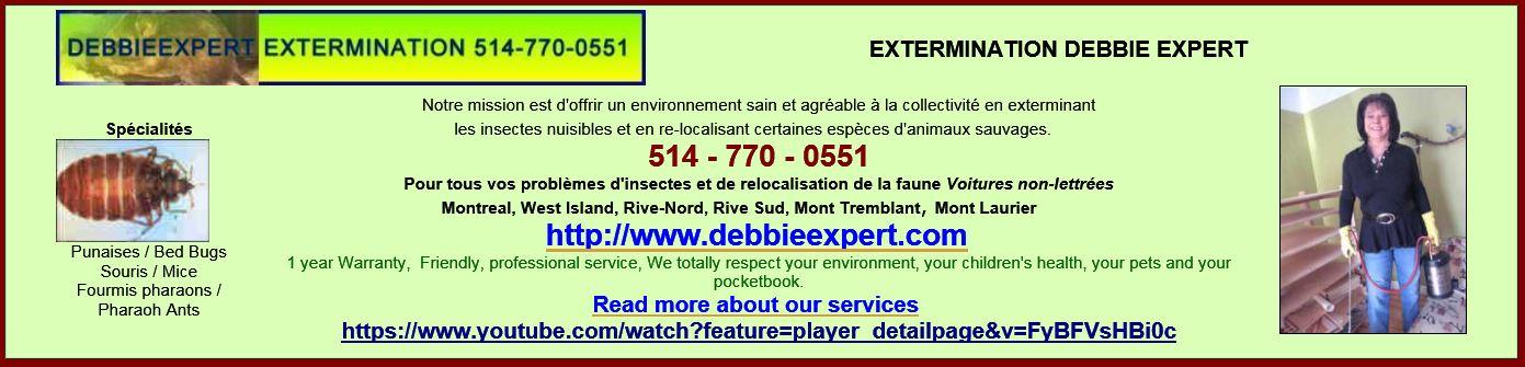Debbie Expert Ex.