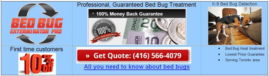 Bed Bug Exterminator Pro