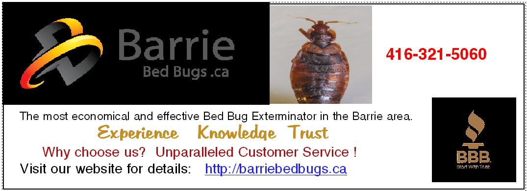 Barrie Bed Bug