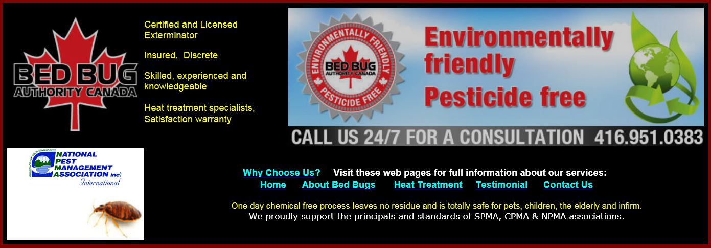 How to Get Rid Of Bed Bugs - PEST CONTROL CANADA